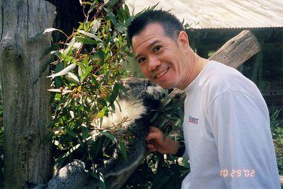larry_koalas