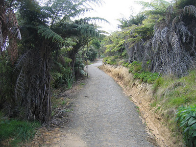 path_2