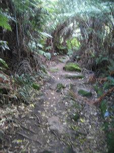 path_3
