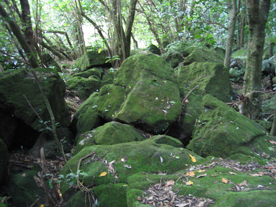 green_rocks