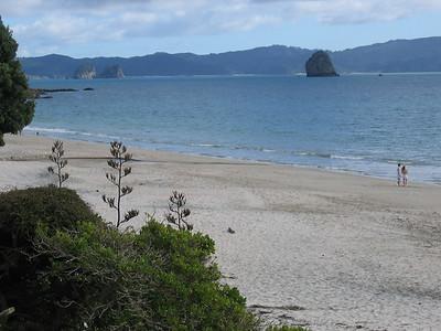 beach_view_01