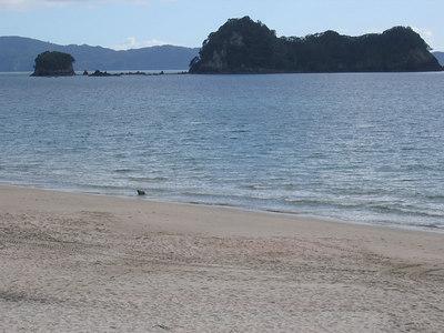 beach_view_02