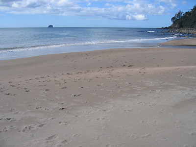 hot_water_beach_04
