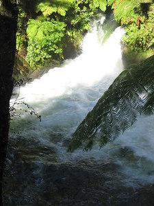 kaituna_river_15