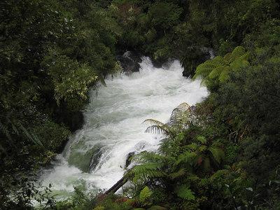 kaituna_river_03