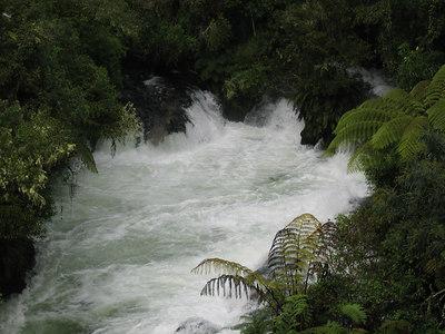 kaituna_river_02
