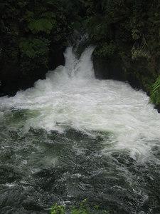 kaituna_river_06
