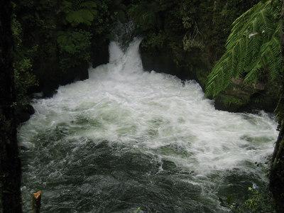 kaituna_river_07