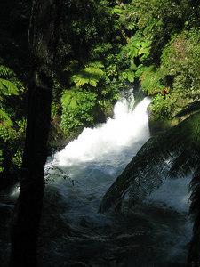 kaituna_river_14