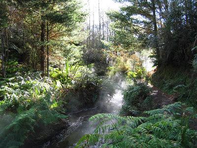 Kerosene Creek2