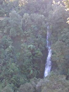 tauwhare_falls_1