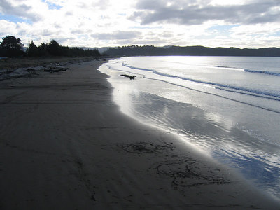 tolaga_bay_beach