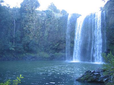 whangarei_falls_10
