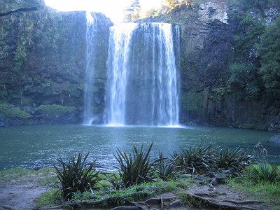 whangarei_falls_20