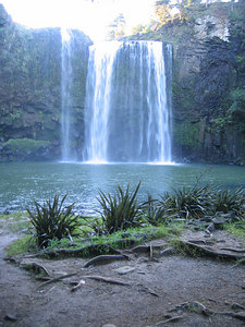 whangarei_falls_21