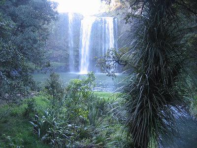 whangarei_falls_18