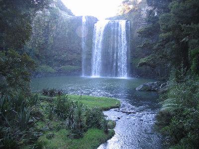 whangarei_falls_14
