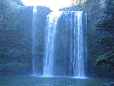 whangarei_falls_17