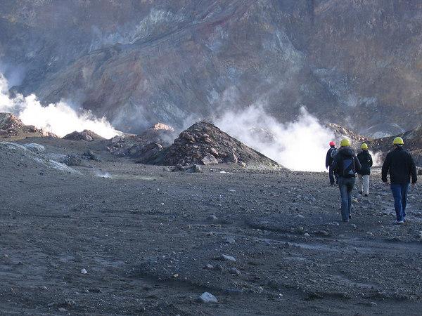 White Island Live Volcano