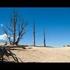 Bryce Canyon 1_0085 copy1