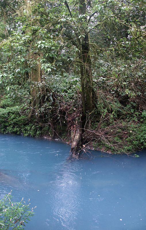 """And now the famous """"blue"""" Rio Celeste river (no color enhancement)!"""