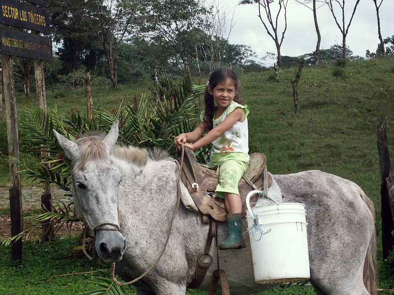 Tenorio National Park: Located 2 hours north of Arenal. The place is very difficult to find, as it is not very touristy yet. Tenorio residents: One family, three kids, several horses.