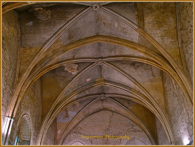 October 2, 2011. Ceiling in the Palais des Papes. Avignon, France.