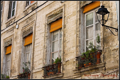 June 30, 2011.  Window boxes. Avignon, France.