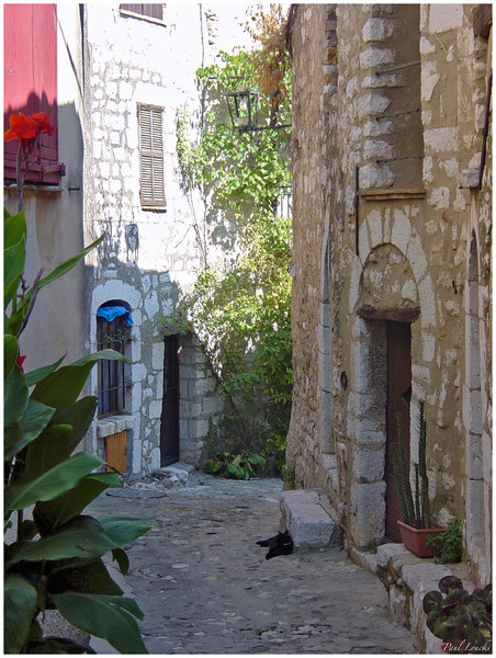 A reclining black cat in Vence.