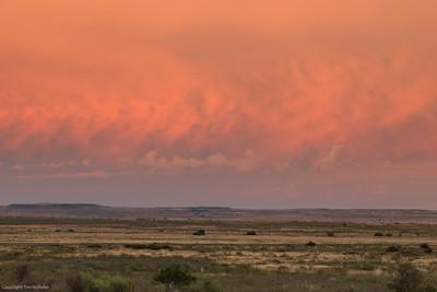 Karoo sunrise, Kraankuil