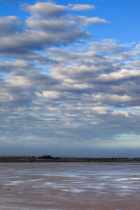 Karoo : Kaalpan Salt Pan Early Morning after Rain