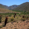 Entering the real fertile valley of Gamkaskloof (Die Hel)
