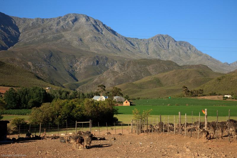 Kruisrivier Guest Farm