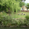 Video: Kruisrivier Guest Farm