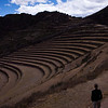 Ginormous terraces, built some time in the first 5-7 centuries BC, used for farming.