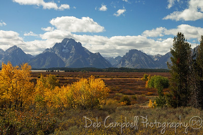 Willow Flats area Grand Teton National Park