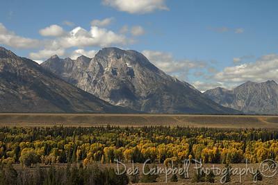 Teton range and fall color Grand Teton National Park