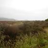 A foggy/rainy day at Abel Tasman Nationnal Park