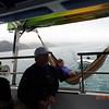 sailing on Tasman Bay