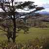 View from Lunga House.