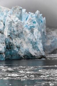 Alaska - 25 Lamplugh Glacier 04