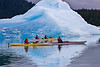 Kayak touring among the icebergs in LeConte Bay