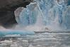 Calving sequence, LeConte Glacier