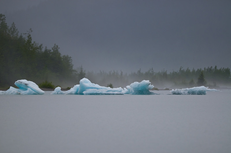 A grey and rainy day on Mendenhall Lake - but great light