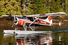Float plane landing in Misty Fiords
