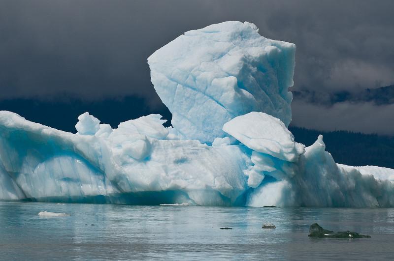 LeConte Bay Iceberg