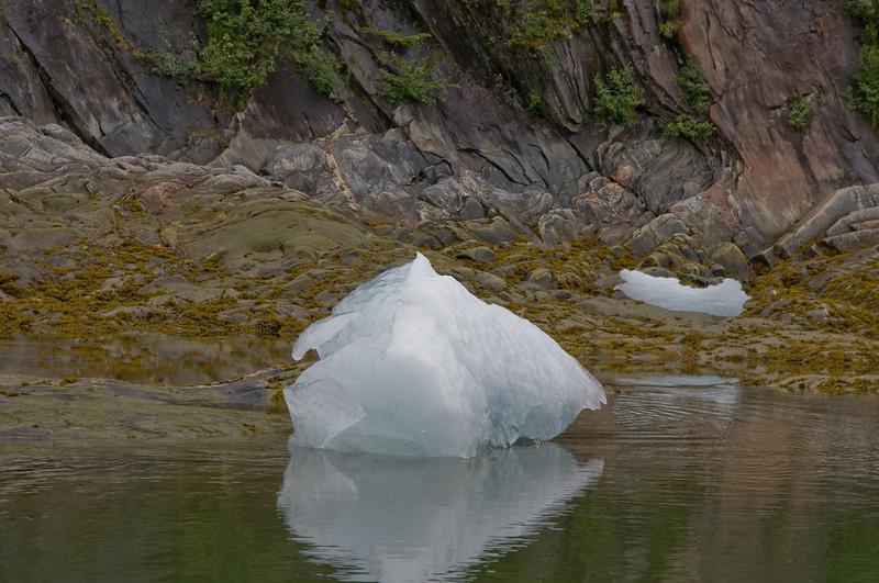 Shore iceberg, LeConte Bay