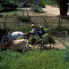 Ox cart.