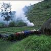 Dani hut and garden.