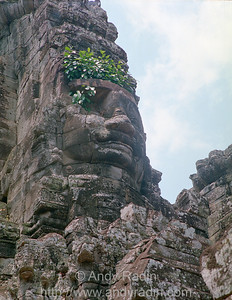 Bayon Head With Greens